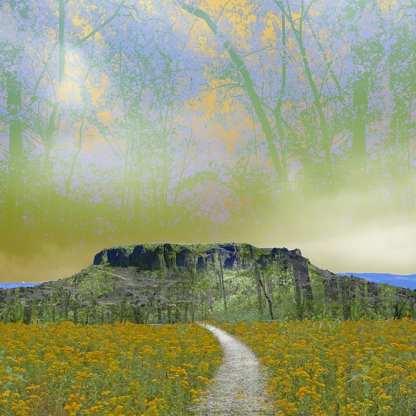 Path to Black Mesa ©Ellen Jantzen