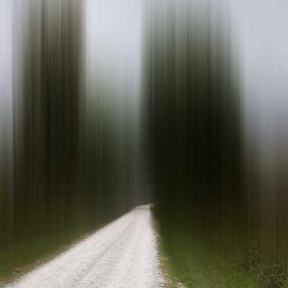 Leading Home ©Ellen Jantzen