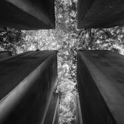 Crossroads ©Carolyn Meltzer