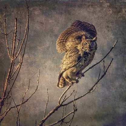 When The Moon Does Rise ©Wendi Schneider