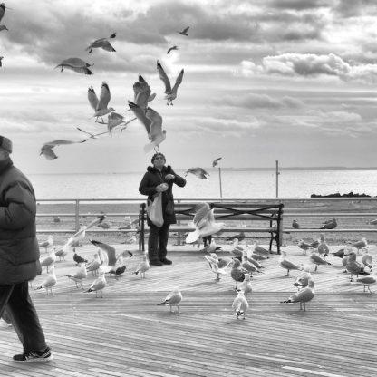 Coney Island Winter ©Sandra Jetton