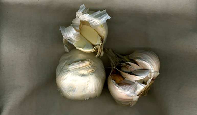 Garlic Bulbs | Jean Sousa