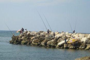 ملابس داخلية وأحذية وقمامة.. هذا نصيب الصيادين من شواطئ طرطوس
