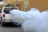 المجلس المحلي يبدأ بخ المبيدات الحشرية في مدينة أريحا