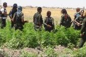 """ترويج المخدرات مهنة رابحة للنظام في دير الزور.. ومصادر ترجح تورط """"الهلال الأحمر"""""""