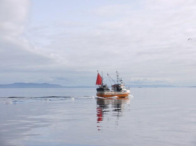 Vissersbootje omgeving Grip