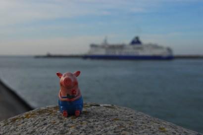Gustav in Calais