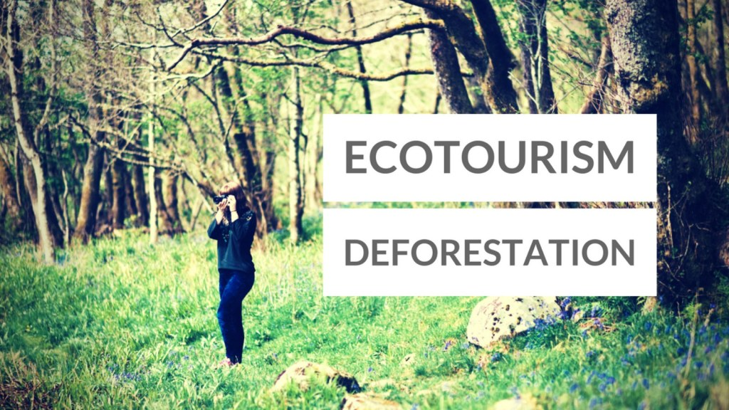Ecotourism Development as a Systematic Means To Decrease Deforestation in National Parks of Indonesia