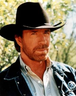 Chuck Norris Facts (Jokes)