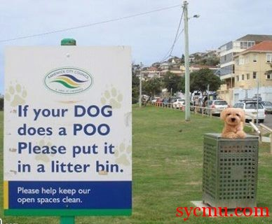 If your Dog does a poo, throw it in a litter bin