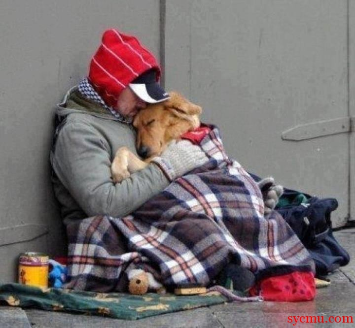 Best Friends Forever Dog and Homeless man