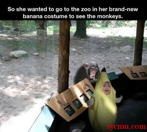 Banana Costume at Zoo with monkey
