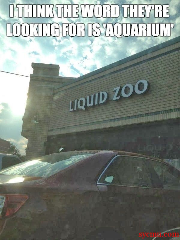 Aquarium call Liquid Zoo