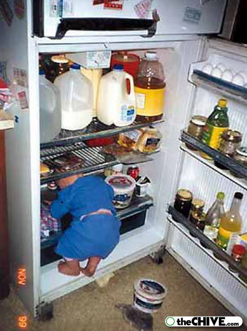 baby inside the fridge