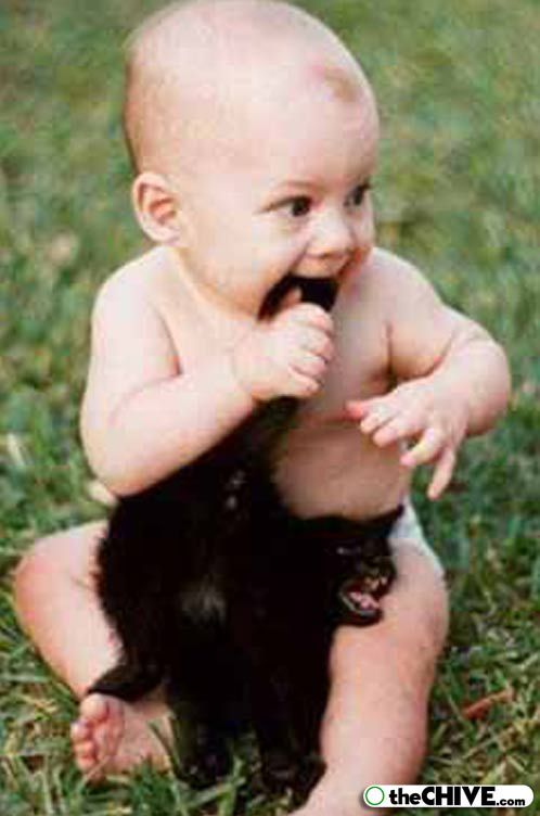Baby biting a cat tail