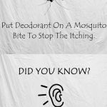 Did You Know Life Hacks Collection