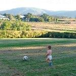 Wilmer spelar fotboll