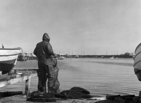 Fisker I Sydhavnen.