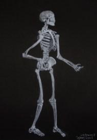 Skeleton with white conte