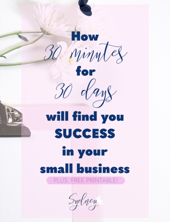 30 Tips for Small Business Success in 30 minutes a day!