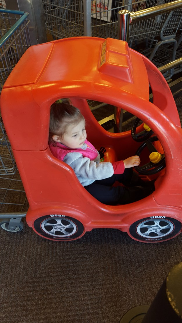 Driving the car, attached to the cart, at King Sooper (2/25/16)
