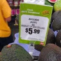 Avocados in Australia