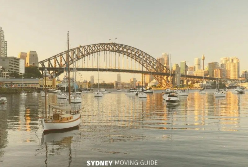 What's the Best Suburb in Sydney for Dog Owners to Live?