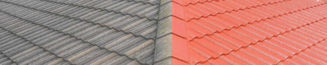 sydney roof restoration norhside