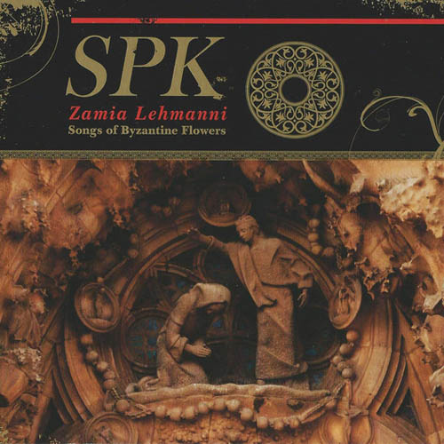 SPK - Zamia Lehmanni