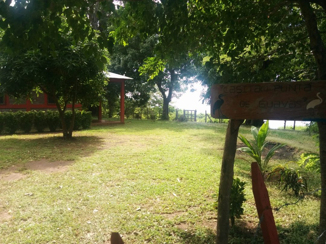 Yard of casita