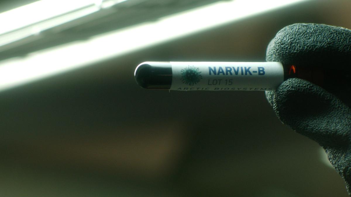 Het Narvik virus is de oorsprong van alle problemen