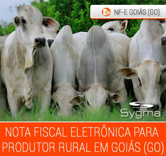 Nota Fiscal Eletrônica Produtor Rural Goiás (GO)