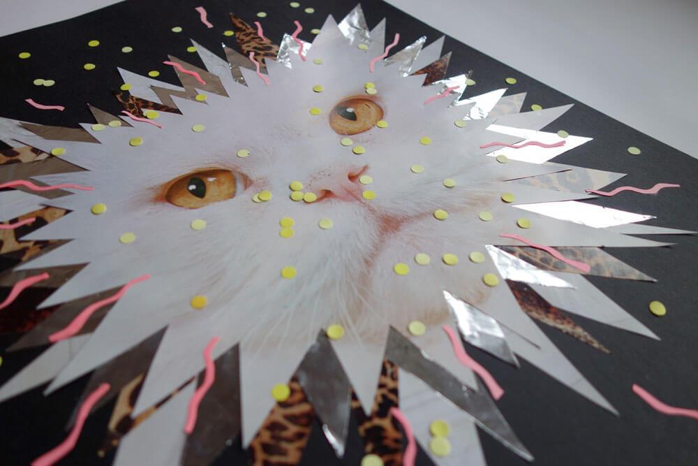 sylvia_stolan_white_cat_closeup