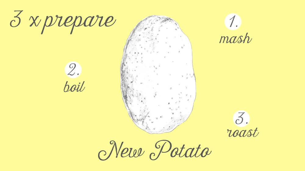 3xveggy.newpotato