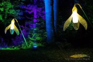 Märchenhaftes Licht