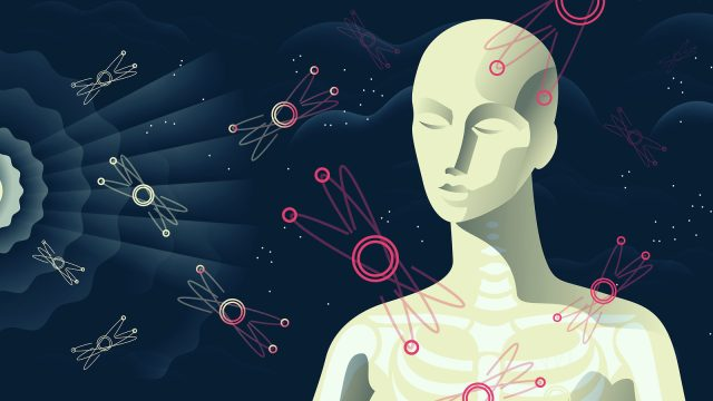 The particle physics of you | symmetry magazine