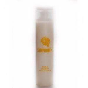 Protein Shampoo für trockene und spröde Haare