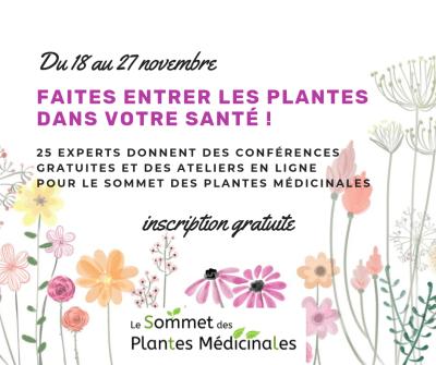 sommet plantes médicinales