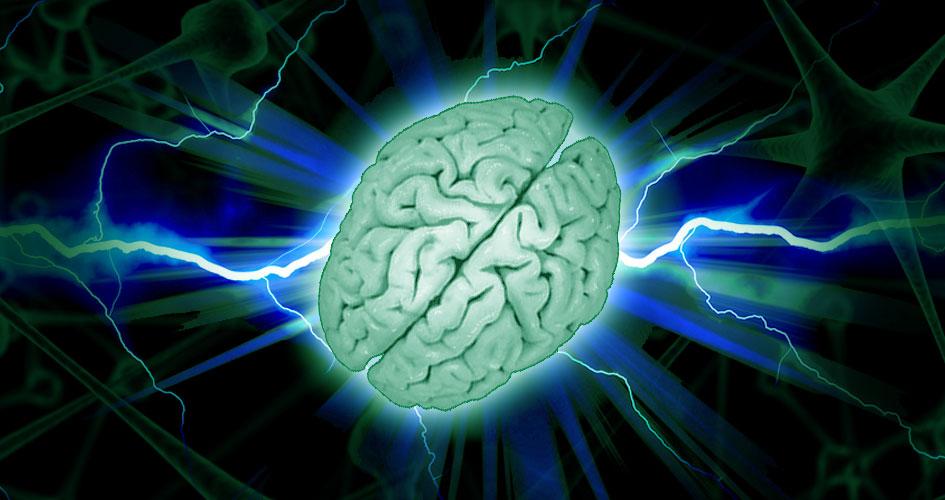 Was ist Synapsenfasching?