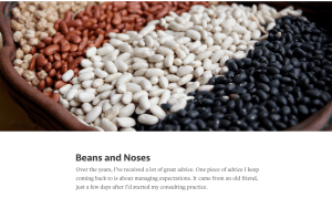 Beans And Noses