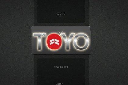Toyo Elevators