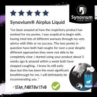 Synovium® Airplus Liquid - Respiratory - Synovium Horse Health