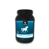 Synovium Biobute Joint supplement for horses, natural Bute alternative, Devils Claw, Tumeric