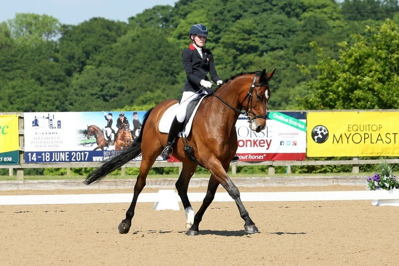 Chloe Vell Dressage Rider Sponsored by Synovium Horse Health
