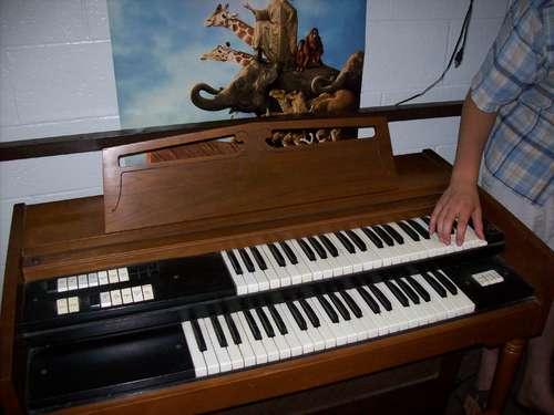 repairing-organ