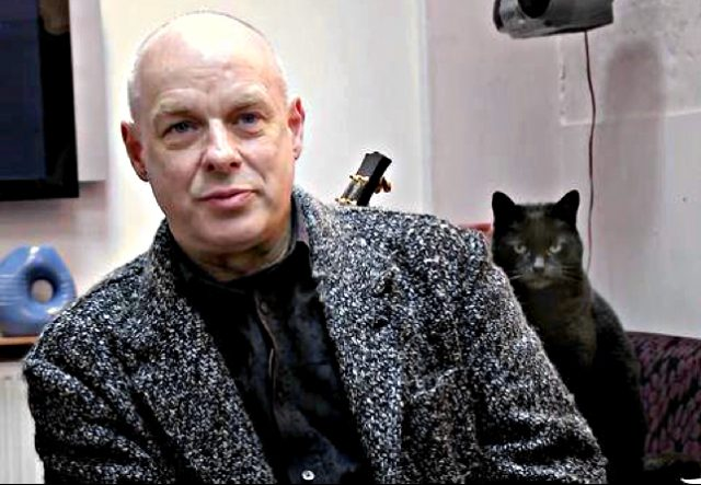 brian-eno-cat-is-not-impressed