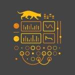 Ableton_MaxForCats_bengal_album_cover