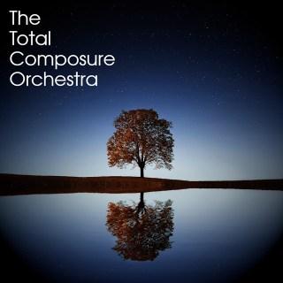 orchestral set up kontakt