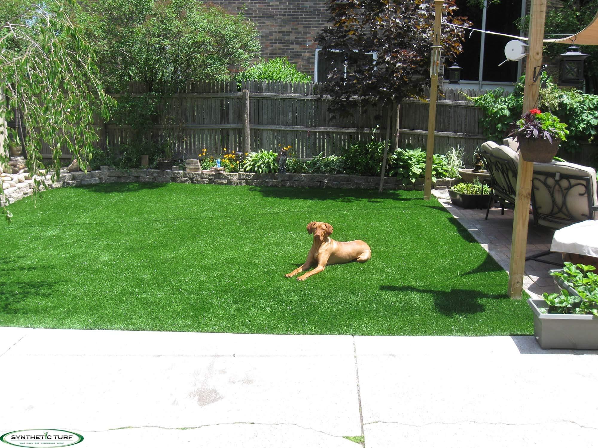 Artificial Turf Dog Runs Pet Turf