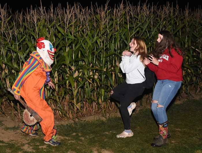 A clown scares visitors to the haunted corn maze at Wagner Farms, Rome, N.Y., Friday September 4, 2020